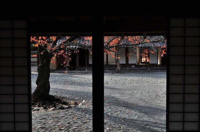 文武学校の中庭の写真