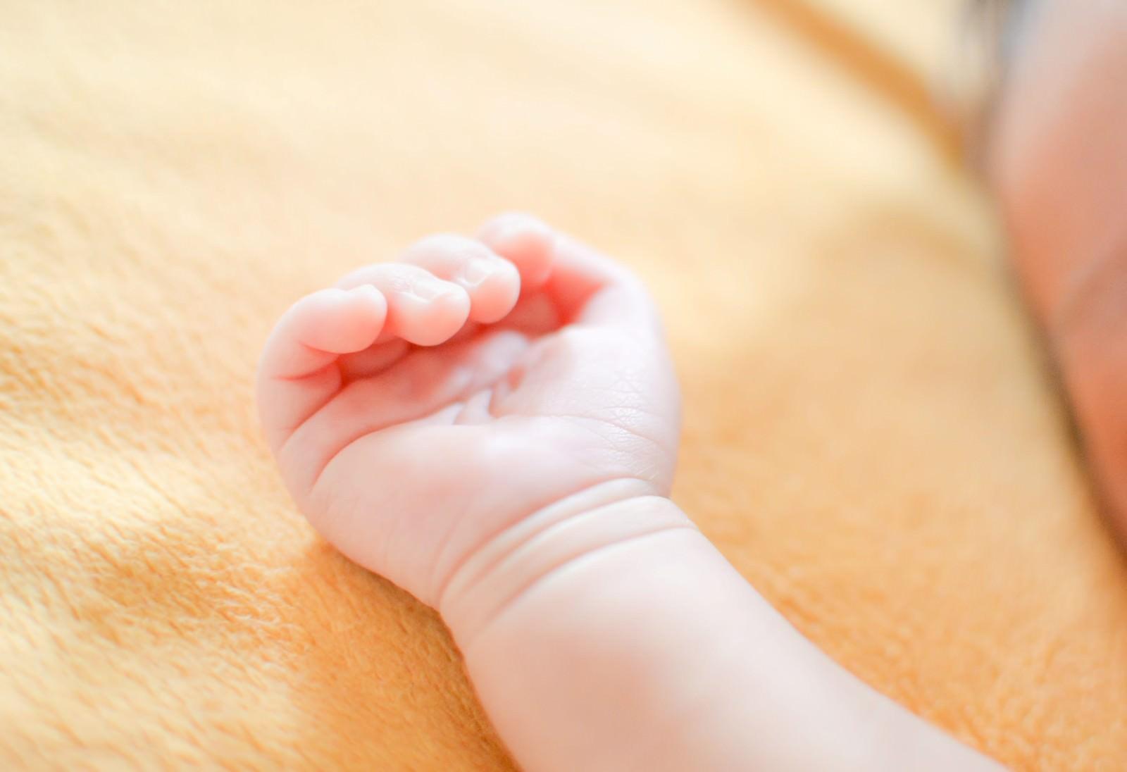 「生まれたばかりの赤ちゃんの手」の写真