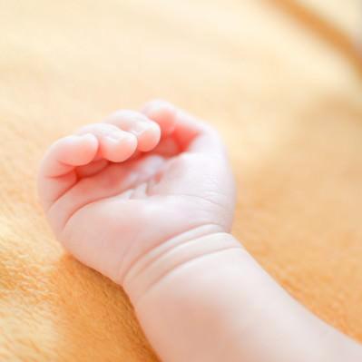 生まれたばかりの赤ちゃんの手の写真