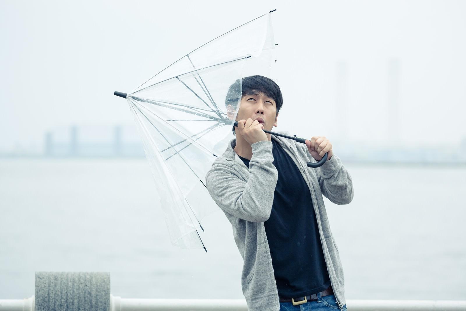 「強風で傘が持っていかれそうになる男性 | 写真の無料素材・フリー素材 - ぱくたそ」の写真[モデル:大川竜弥]