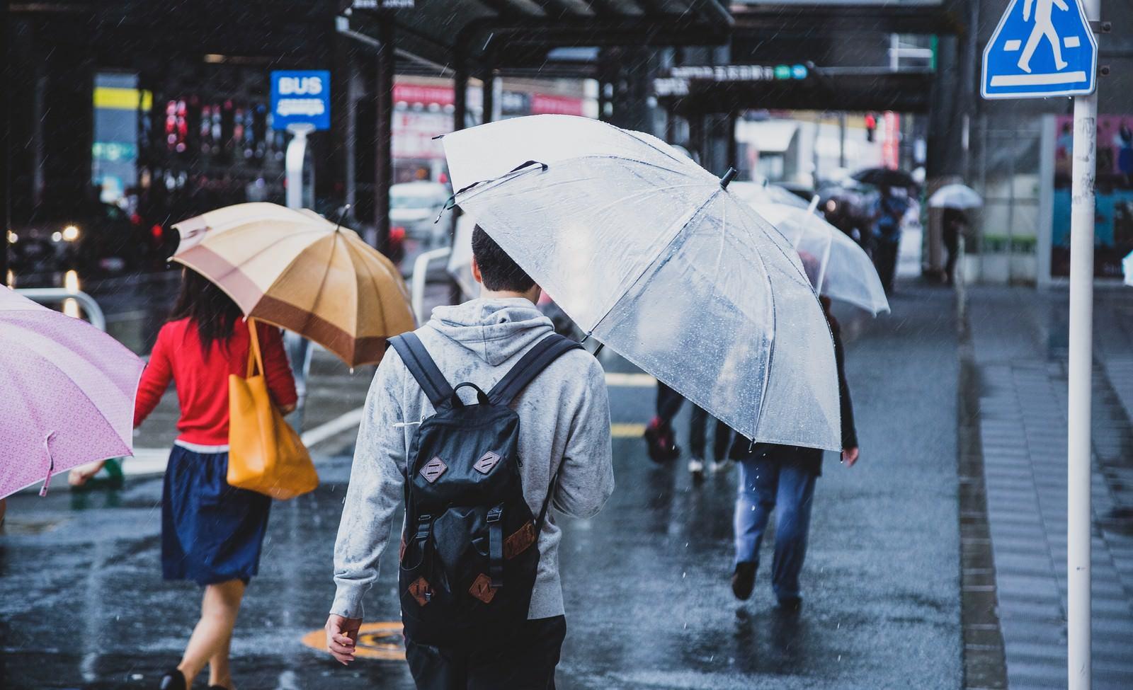 「降りしきる雨の中、家路に向かう」の写真
