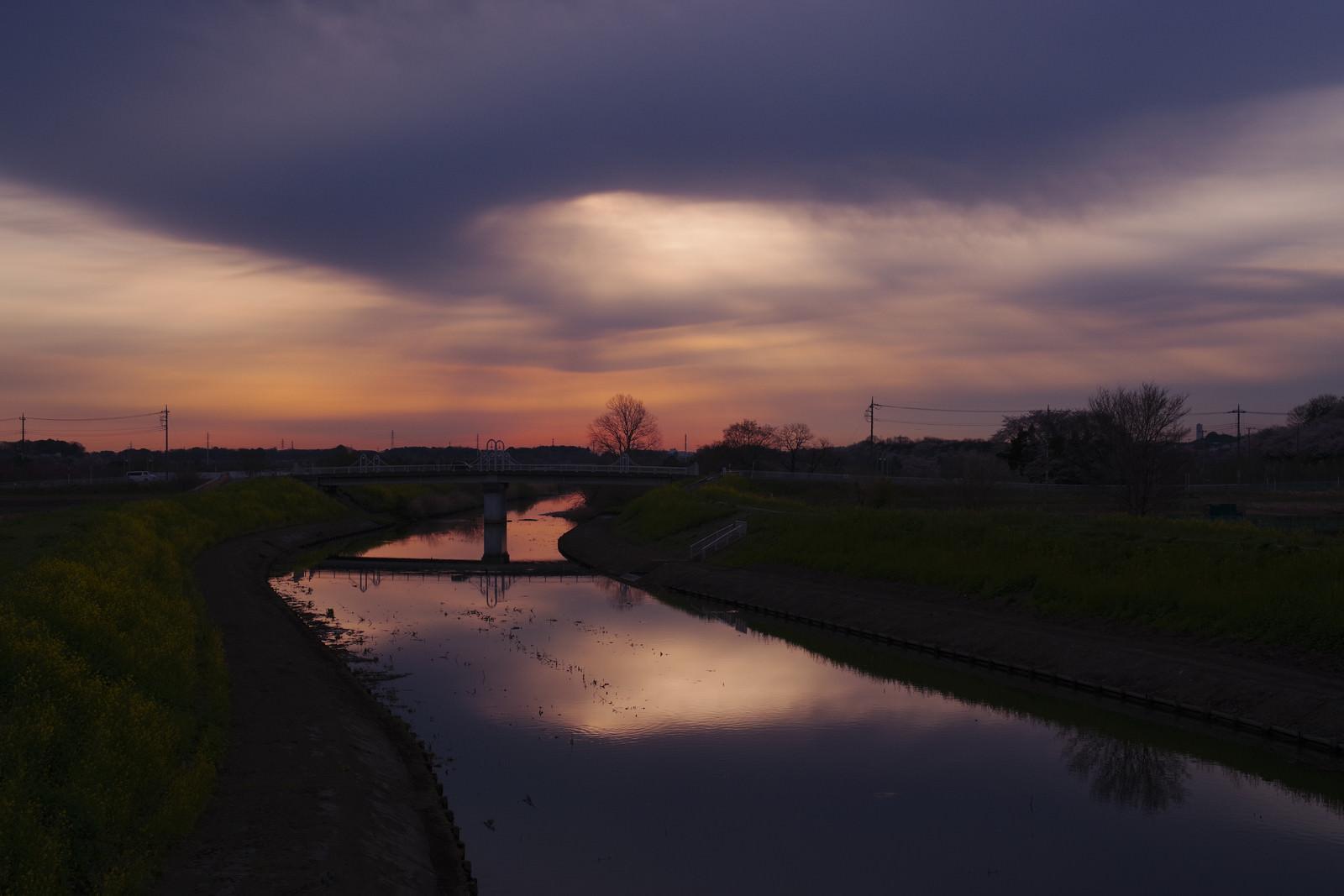 「不穏な朝の光を反射する見沼田んぼの芝川」の写真