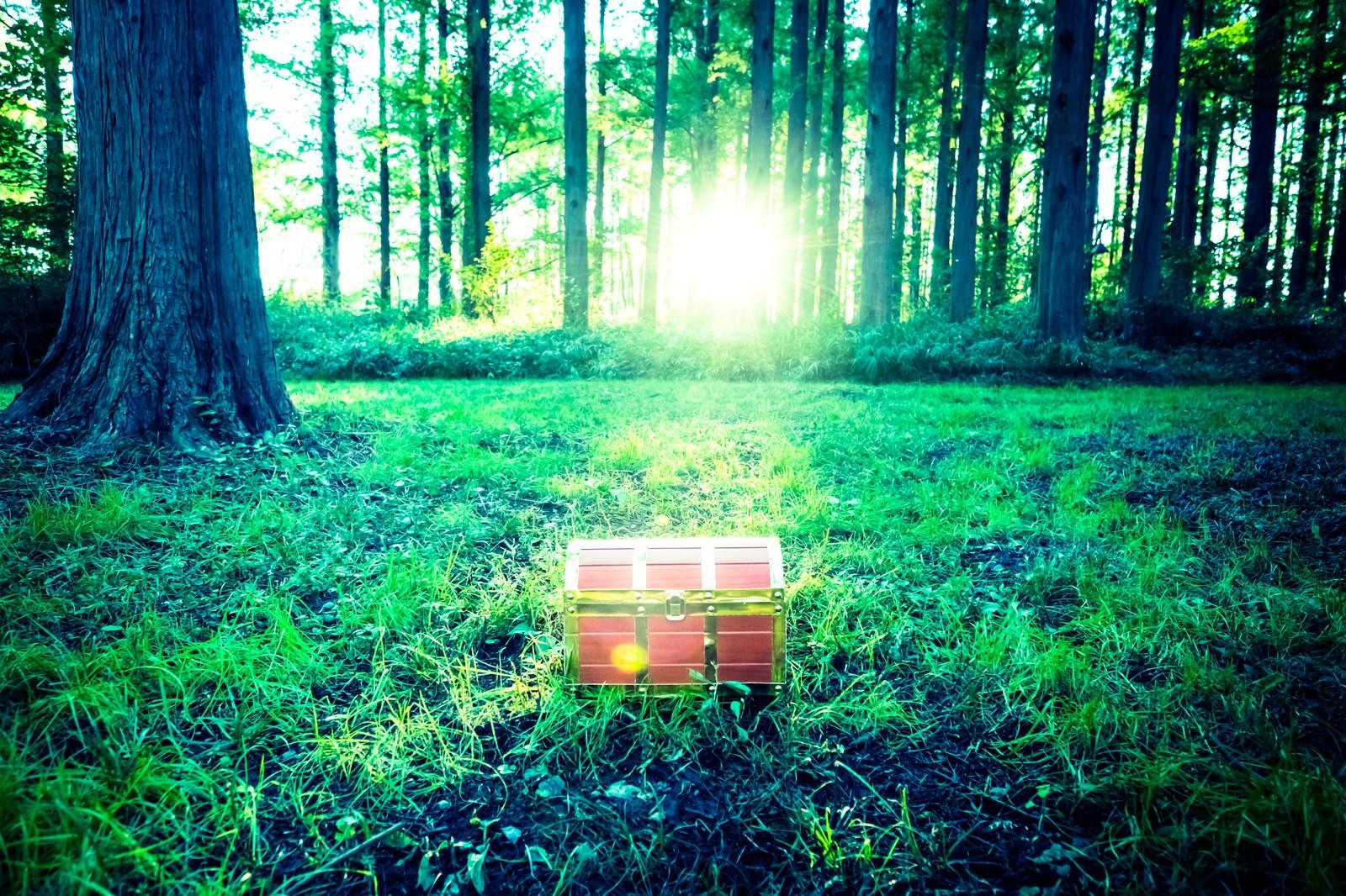 「勇者は森の中で宝箱を見つけた!勇者は森の中で宝箱を見つけた!」のフリー写真素材を拡大