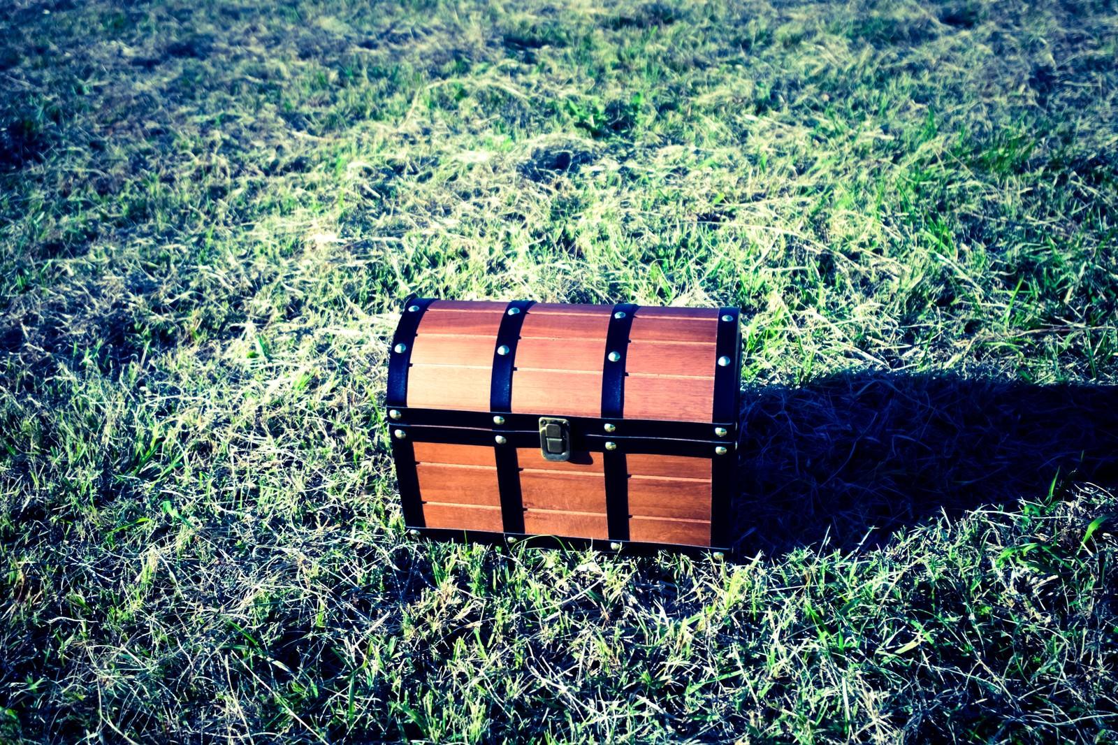 「芝生の上に宝箱を見つけた!」の写真