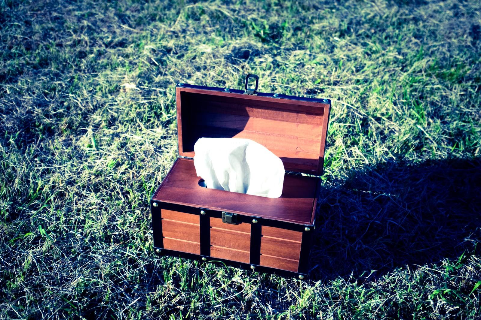 「宝箱はティッシュケースだった」の写真