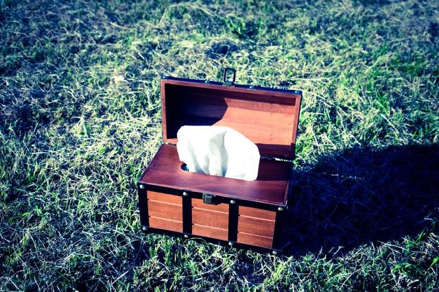 宝箱はティッシュケースだったの写真