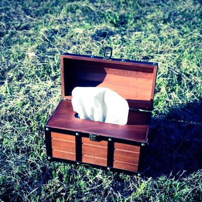 「宝箱はティッシュケースだった」の写真素材