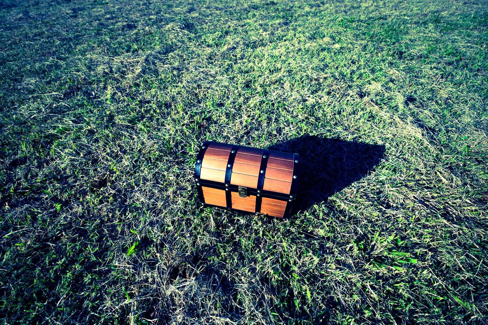 「草原に置かれた宝箱」の写真