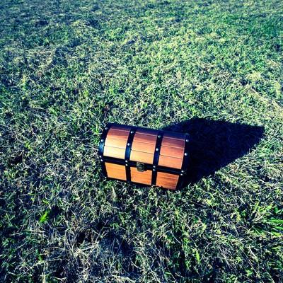 草原に置かれた宝箱の写真