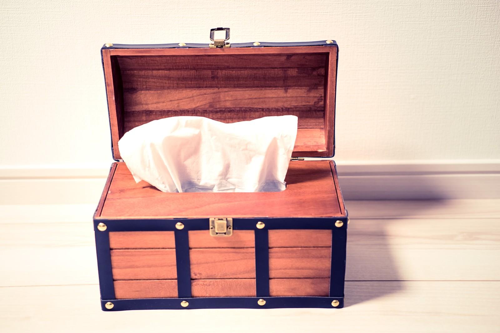 「テッシュケース(宝箱)テッシュケース(宝箱)」のフリー写真素材を拡大