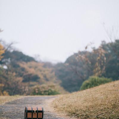 「道の真中に置かれた宝箱(明らかに罠)」の写真素材