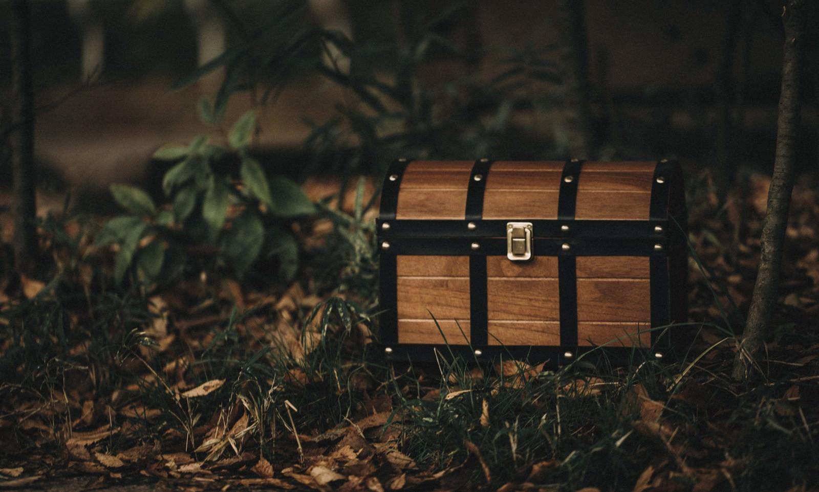 「森を探索していたら宝箱を見つけた!」の写真