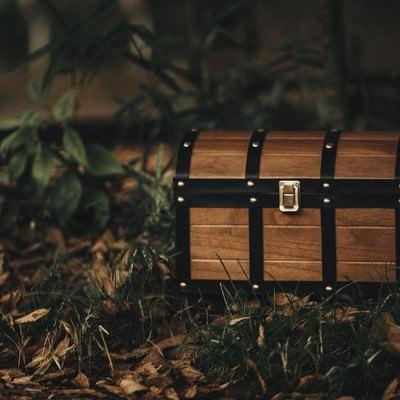 「森を探索していたら宝箱を見つけた!」の写真素材