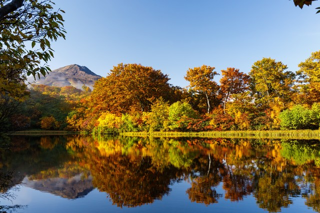 善神沼と鳥海山の写真