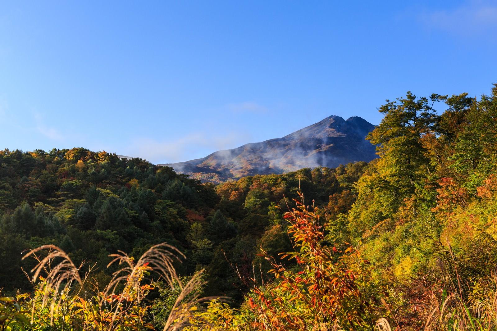 「紅葉時期の鳥海山麓」の写真