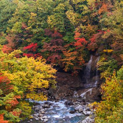 八幡平の紅葉渓谷の写真
