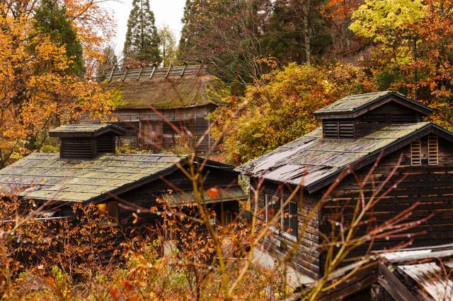 山間の温泉宿(紅葉時期)の写真