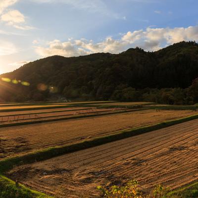 「稲刈り後の田んぼ(夕焼け)」の写真素材