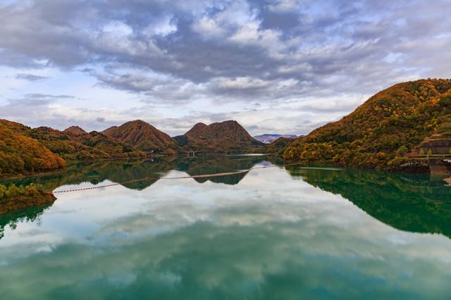 緑色の水の玉川ダム湖の写真