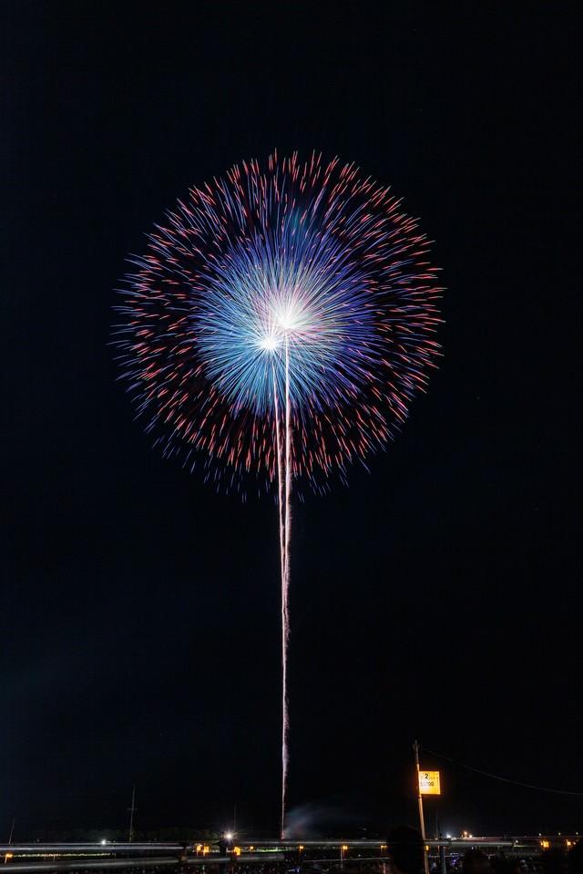 夜空を彩る大輪の花の写真