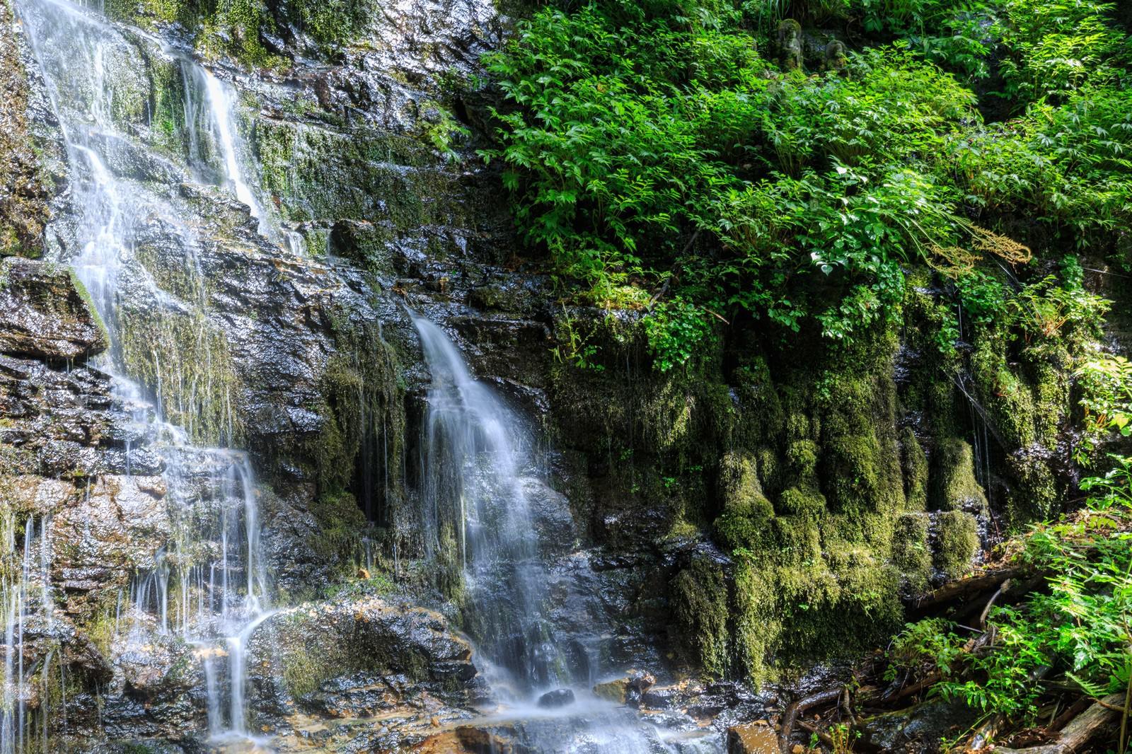「滝の沢三十三観音(苔むす仏像たち)滝の沢三十三観音(苔むす仏像たち)」のフリー写真素材を拡大