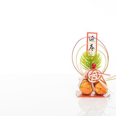 迎春(正月飾り)の写真