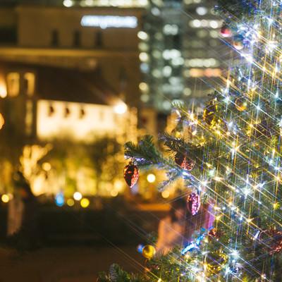 クリスマスツリーと街並み(夜景)の写真