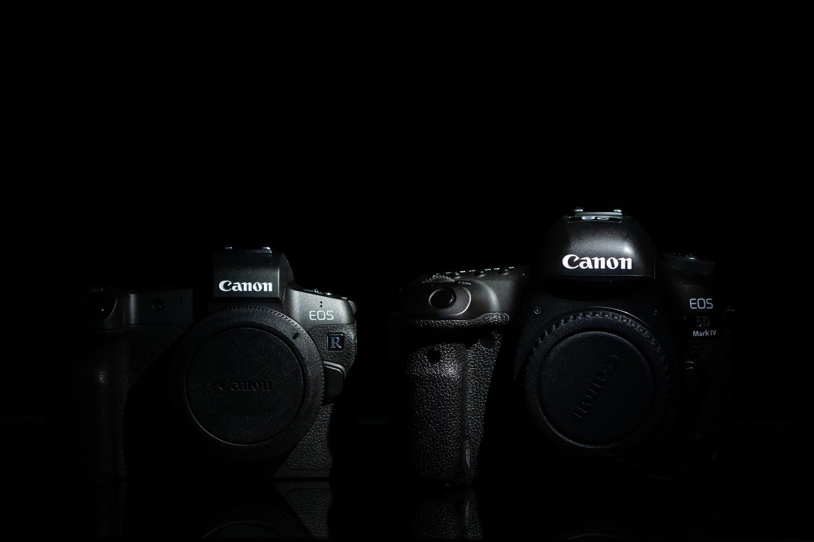 「ミラーレスカメラと一眼レフカメラ(フルサイズ)」の写真