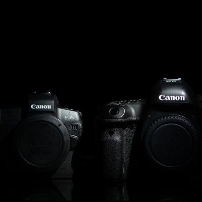 ミラーレスカメラと一眼レフカメラ(フルサイズ)の写真