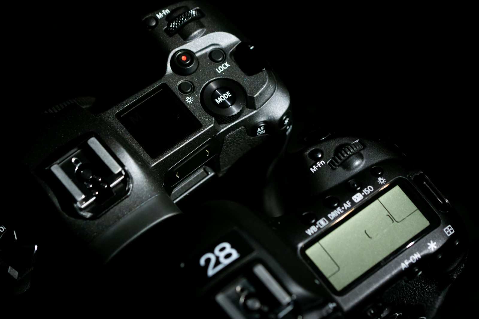 「CANON EOS Rと5D MarkⅣの上面比較」