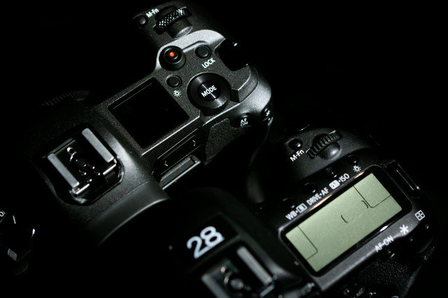CANON EOS Rと5D MarkⅣの上面比較の写真