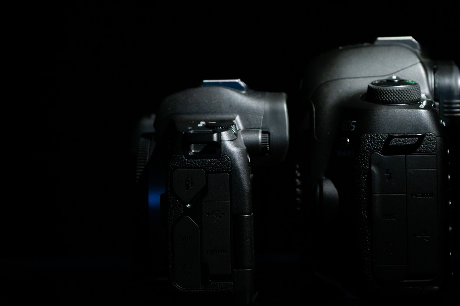 「CANON EOS Rと5D MarkⅣの右面比較」の写真