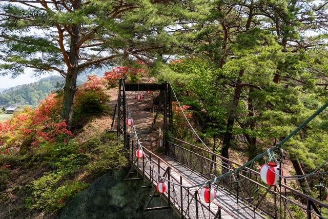 武石公園の吊橋から見るツツジの写真