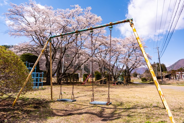 児童公園に咲く桜とブランコの写真