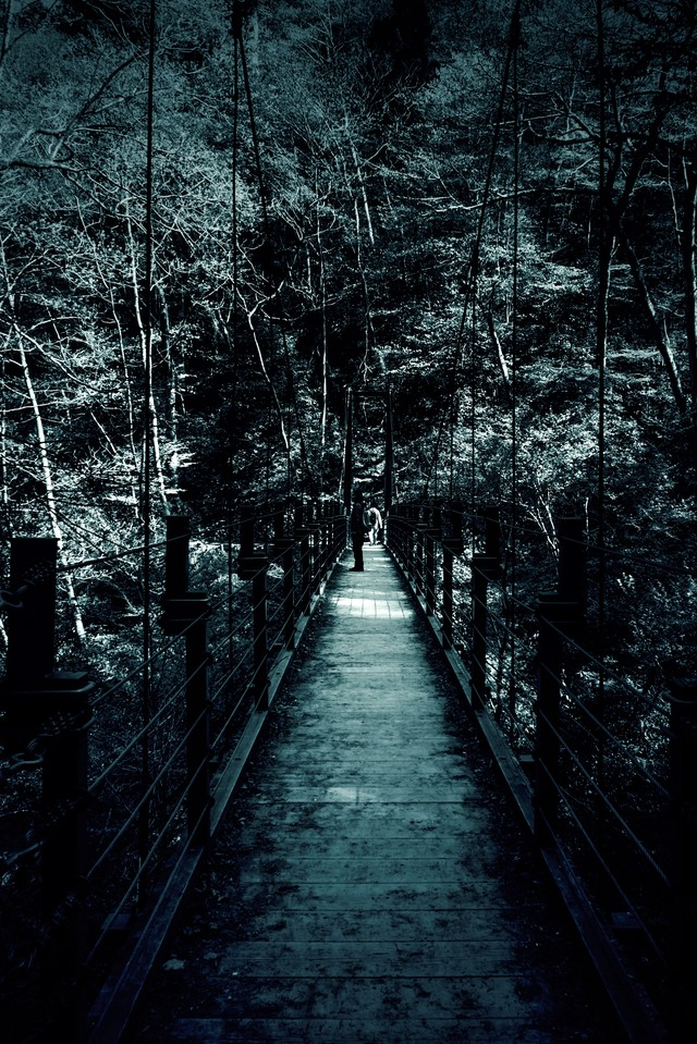 「吊橋」のフリー写真素材