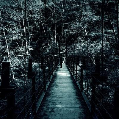 「吊橋」の写真素材