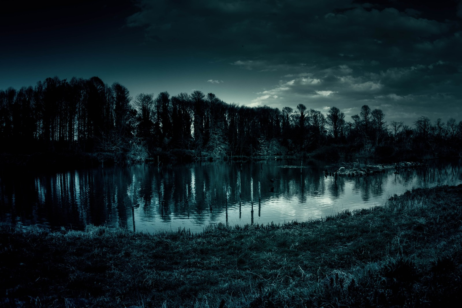 「いかにも不気味な池」の写真