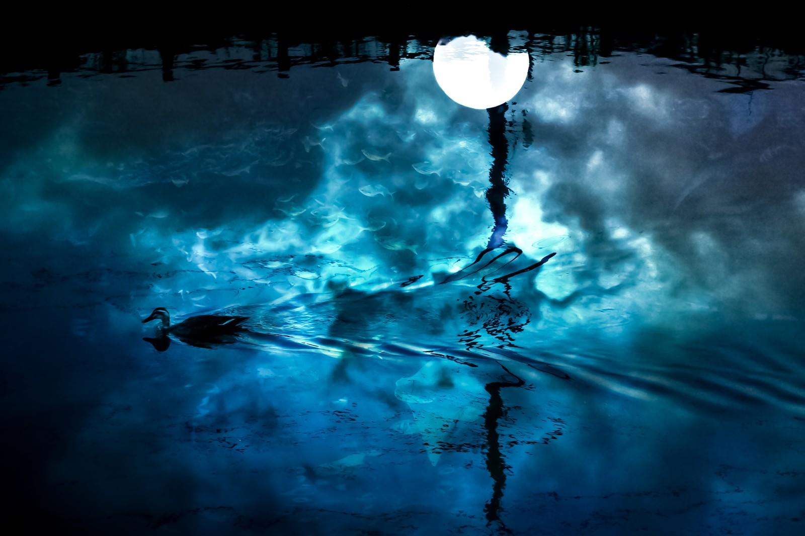 「湖面の満月(フォトモンタージュ)」の写真