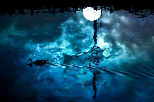 湖面の満月(フォトモンタージュ)の写真