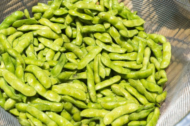 収穫したばかりの枝豆の写真