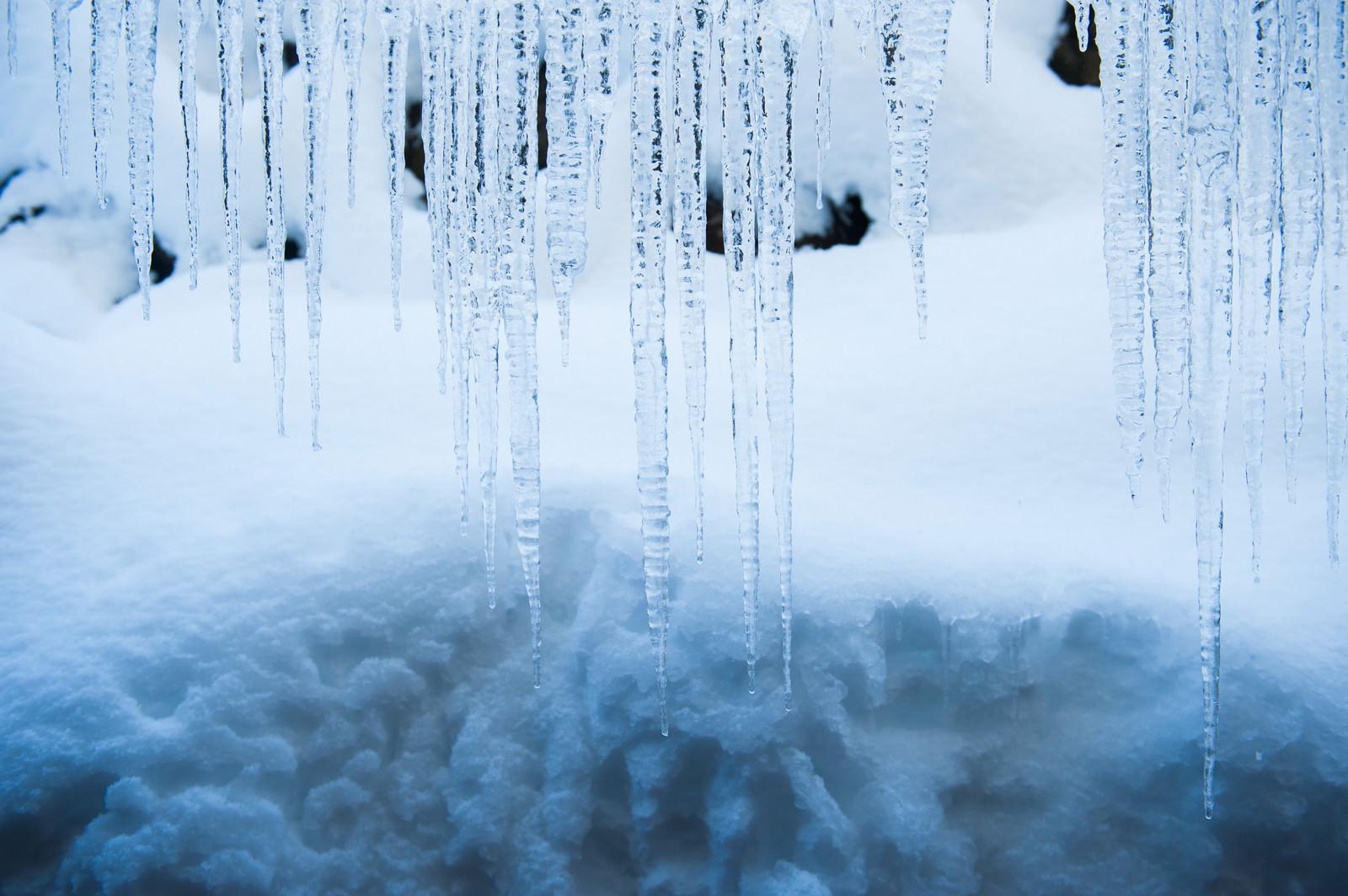 「横一線に並んだ氷柱」の写真