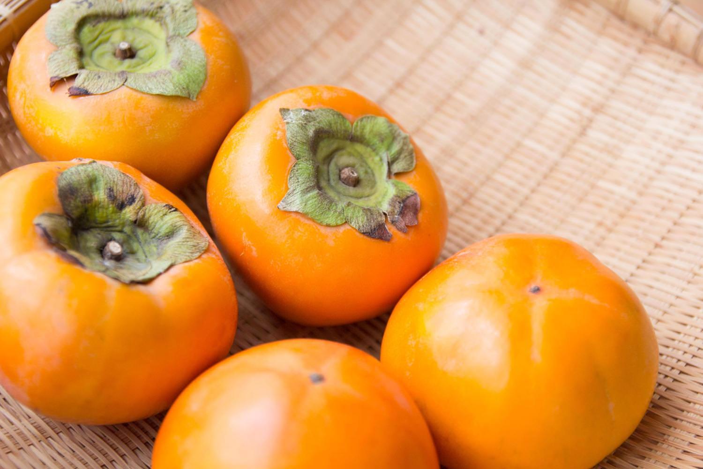 「採れたての柿」の写真