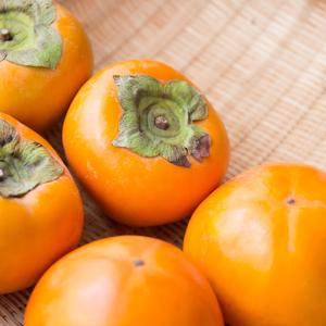 「採れたての柿」の写真素材