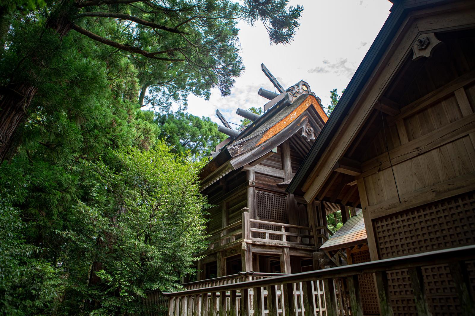 「須佐神社の本殿(島根県出雲市) | 写真の無料素材・フリー素材 - ぱくたそ」の写真