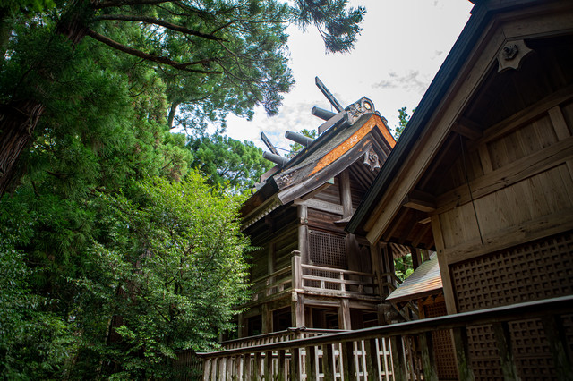 須佐神社の本殿(島根県出雲市)の写真