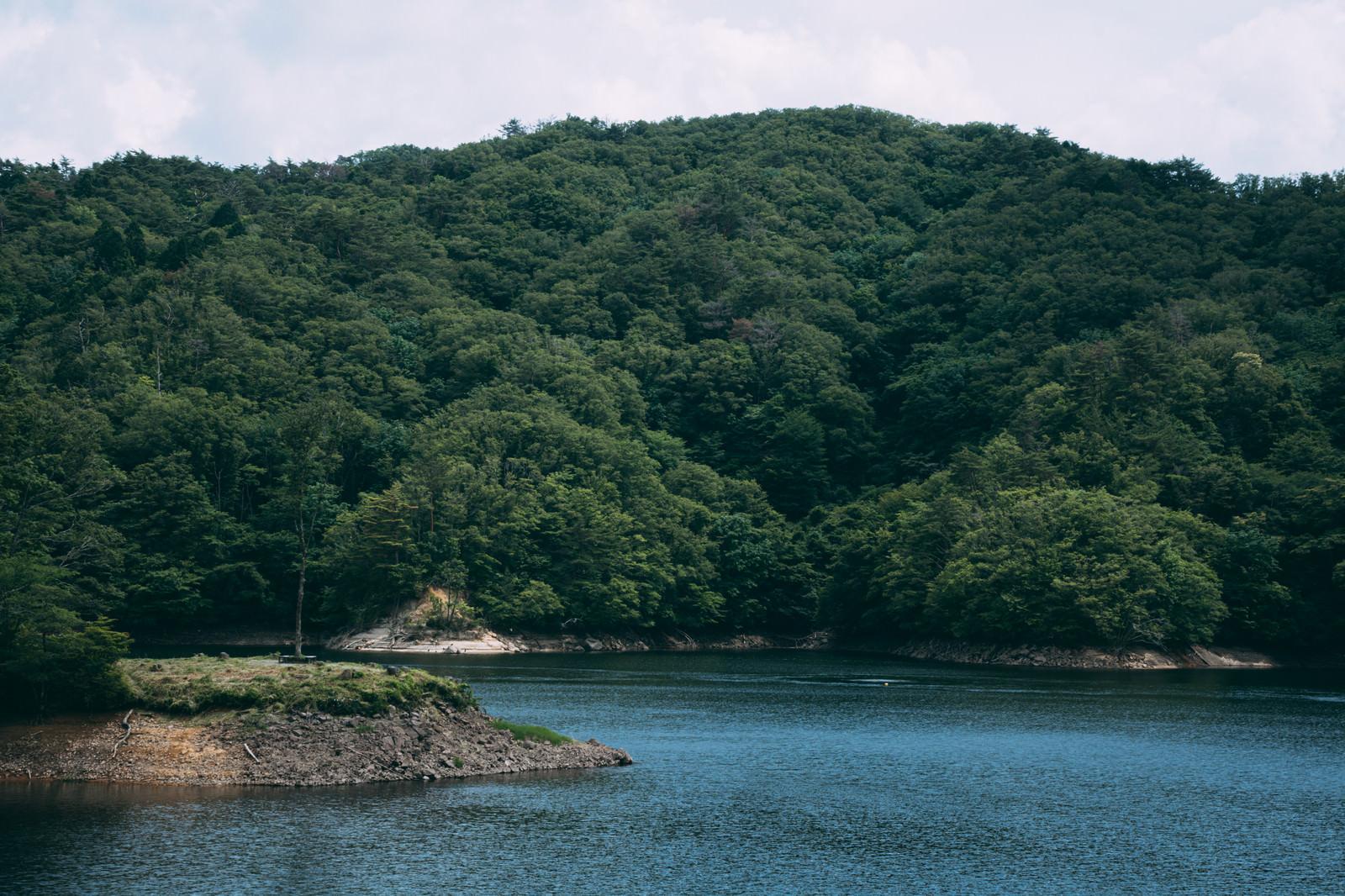 「ダム湖と湖畔を彩る木々(羽生ダム)」の写真