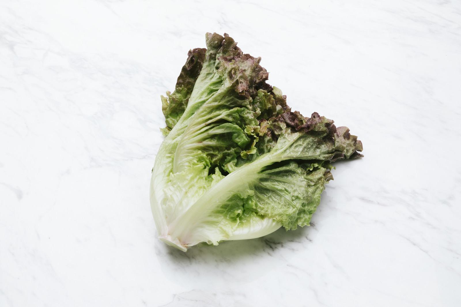 「サニーレタス(食材)サニーレタス(食材)」のフリー写真素材を拡大