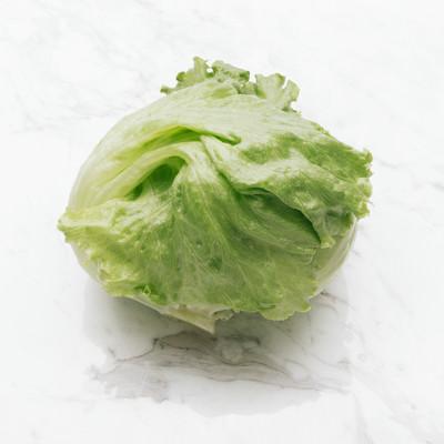 「レタス(食材)」の写真素材