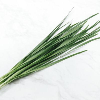 「ニラ(食材)」の写真素材