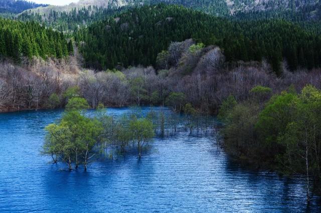 山の中のダム湖の写真